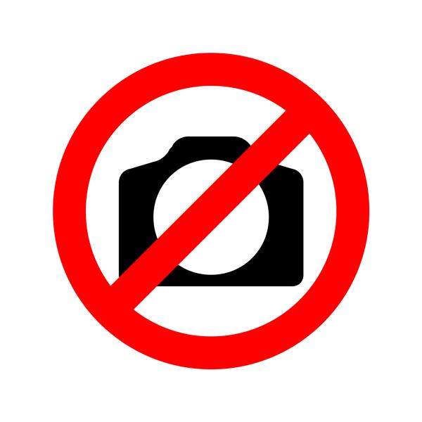 Horasis_Logo_detail